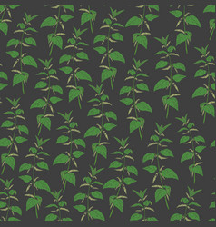 Botanical seamless pattern with stinging nettle on vector
