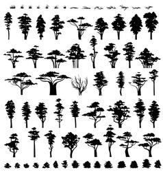 Nature trees trees silhouettes isolated on white vector