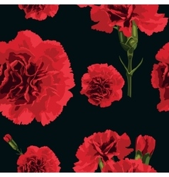 carnations flower vector image