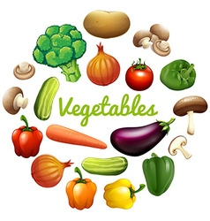 Banner design with fresh vegetables vector