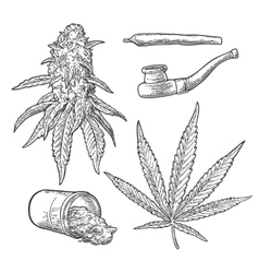 Marijuana buds leaves bottle cigarettes and vector image