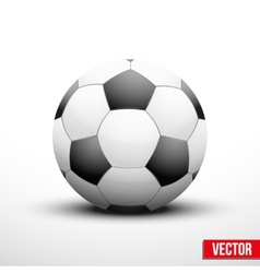 Soccer ball in the traditional two-tone colors vector image vector image