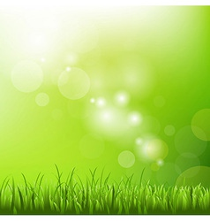 Green background with blur and grass vector