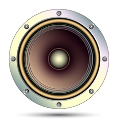 Audio speaker vector