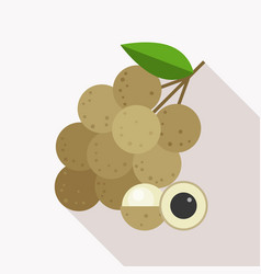 longan icon with long shadow vector image vector image