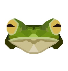 Low poly frog vector