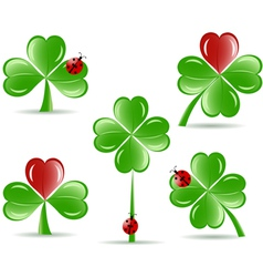 set of shamrocks vector image