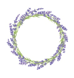Circle of lavender flowers vector