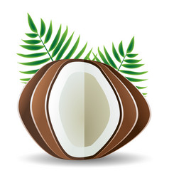 coconut palm leaves vector image vector image