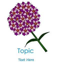 The of purplr cycle flower vector