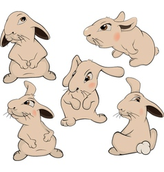 A set of rabbits cartoon vector