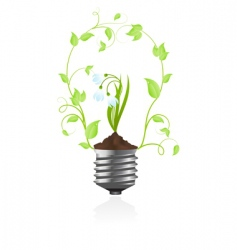 bulb with plant of snowdrop vector image vector image