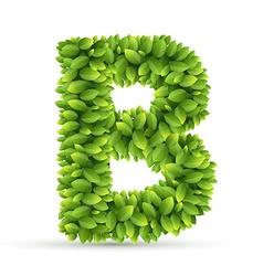 Letter b alphabet of green leaves vector