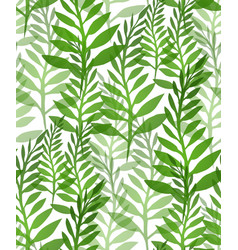 seamless texture with plants and ferns background vector image