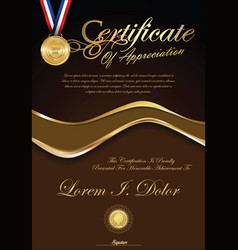 certificate or diploma retro vintage template vector image