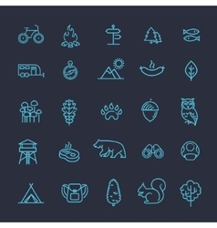 Camping Forest and Outdoor Activities icons vector image