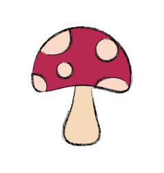 Fungus vector