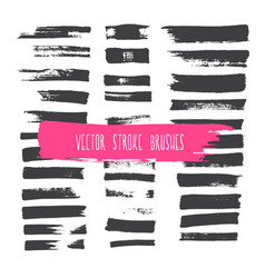 stroke brushes vector image vector image