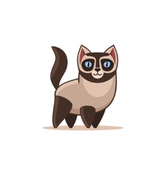 Siamese cat isolated on the white background vector