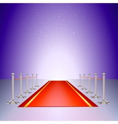 Red carpet entrance with the stanchions and the vector image vector image