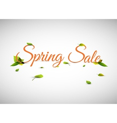 Spring sale background vector image vector image