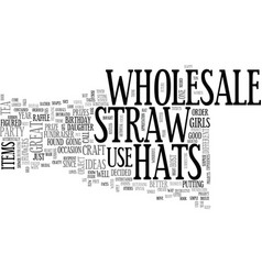 Wholesale straw hats text word cloud concept vector