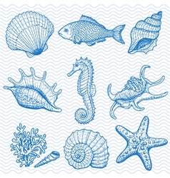 Sea hand drawn vector