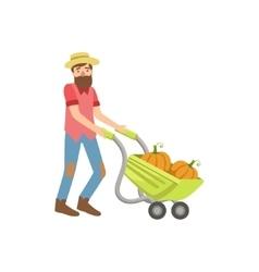 Bearded man rolling a wheel barrel with pumpkins vector