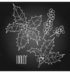 Graphic holly collection vector image vector image