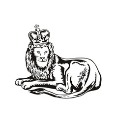 Lion Big Cat with Crown vector image vector image