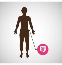 silhouette man intestine anatomy body vector image
