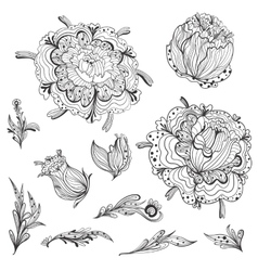Sketch floral design elements vector