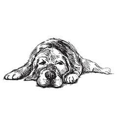 Hand sketch lying dog vector