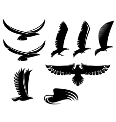 Set of heraldry black birds vector