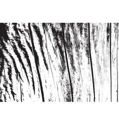 Dry wooden texture vector