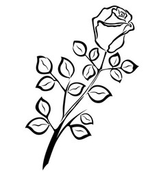 Black outline of single rose flower vector