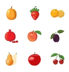 Fresh fruit icons set cartoon style vector image vector image