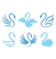 Swan icons or birds icon for natural care eco life vector