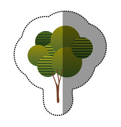 sticker beautiful tree icon vector image