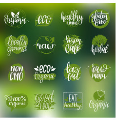 Eco organic bio signs vegan healthy vector