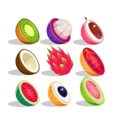 Exotic fruits sliced in half set of bright icons vector