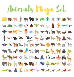 flat style big set of animals vector image vector image