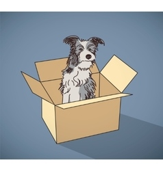 Sad homeless street dog alone in box color vector