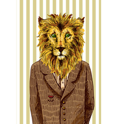 lion in a jacket vector image vector image