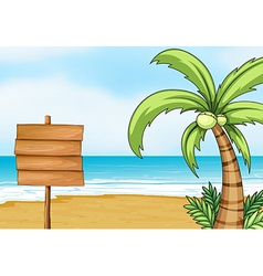 Signpost and coconut tree vector image vector image