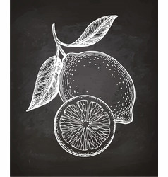 lemon sketch on chalkboard vector image vector image