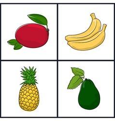 Mango bananapineappleavocado vector