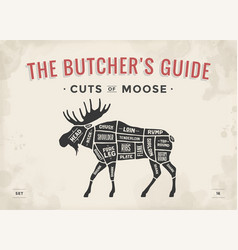 Butcher diagram scheme - moose vector