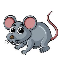 Little rat on white background vector
