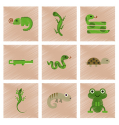 Assembly flat shading style icons exotic wild vector